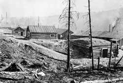Virginia and Rainy Lake Lumber Camp 39, about one mile north of Echo Lake, ca. 1916. Visible are the root house (in the foreground, next to the office) and the filling shack. Photograph Collection, Minnesota Historical Society, St. Paul