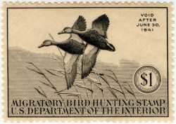 Federal Duck Stamp Design