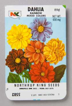 Northrup King Dahlia seed packet
