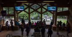 Viewing area at the International Wolf Center