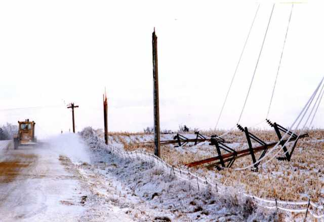 Color image of power lines in Hayward destroyed by the Halloween Blizzard, 1991. Photograph by Joey Mcleister, Minneapolis Star Tribune.