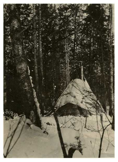 Wigwam on Nett Lake Reservation of Ojibwe, 1918.