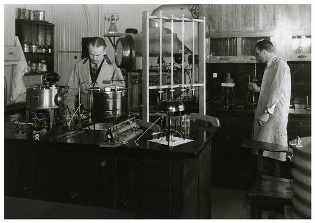 Researchers at the University of Minnesota