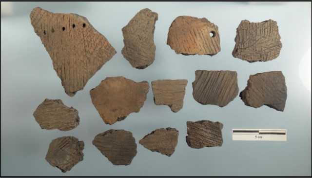 Sherds of Fox Lake-type ceramics