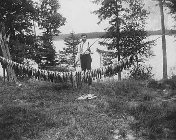 Black and white photograph of a man with string of fish caught in Itasca Lake, c.1915.