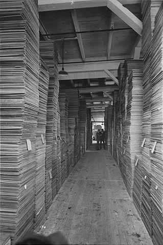Black and white photograph showing stacks of milled lumber, ca. 1915.