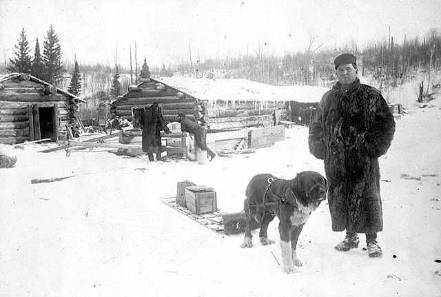Photograph of Frank Higgins and a dog with a sled outside a lumber camp c.1900.