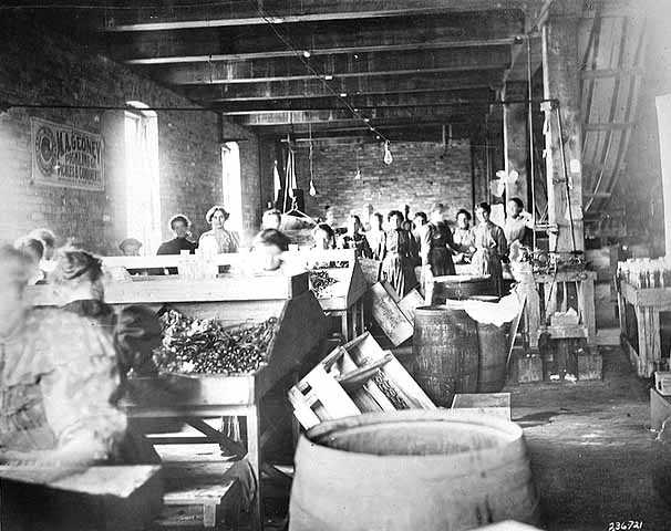 Black and white photograph of Female employees at the M. A. Gedney Company, c.1912.