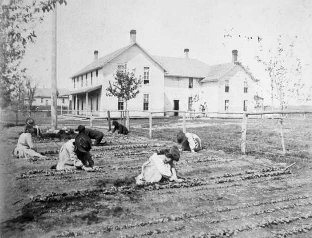 Black and white photograph of children at a Native American boarding school work in a garden plot, c.1890s.