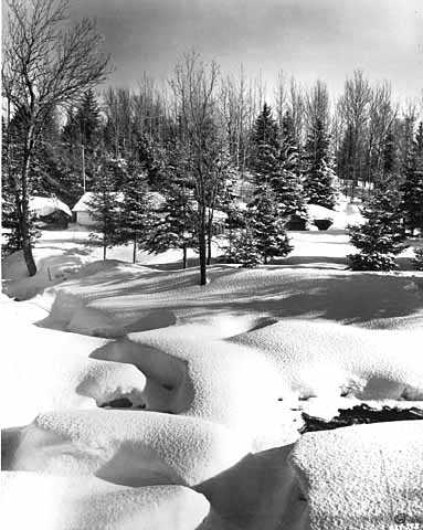 Winter on the Devil Track of the Gunflint Trail. Photograph by Norton & Peel, March 20, 1955.