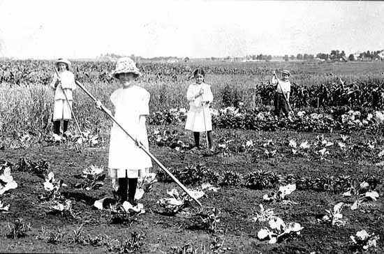 Black and white photograph of students in a gardening class tend a field in Pipestone County, c.1918.