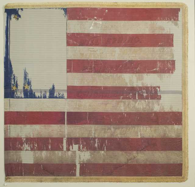 2nd Minnesota national battle flag