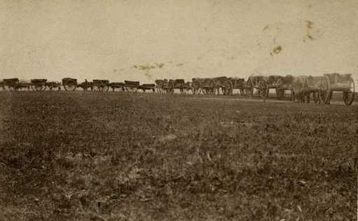 Black and white photograph of an ox-cart train on a Red River trail, ca. 1860.