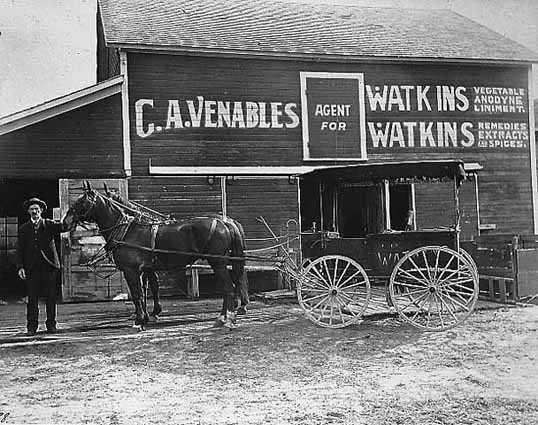 William McAdam, salesman for Watkins' Remedies of Winona