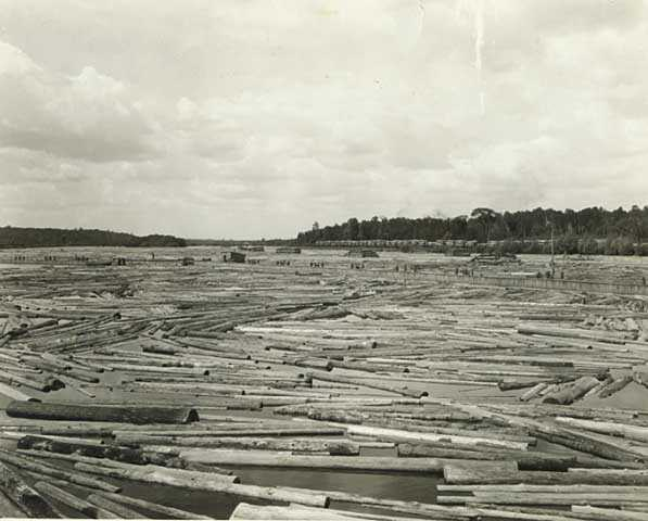 Hot pond and log storage for the new mill of the Northern Lumber Company
