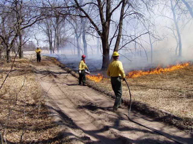Prescribed burn inside Cedar Creek Ecosystem Science Reserve