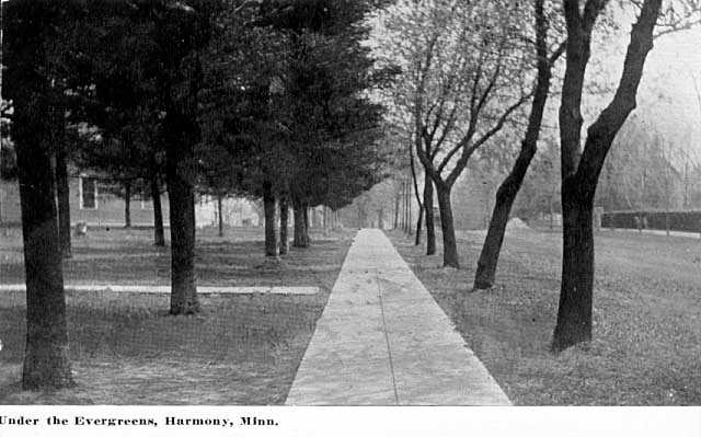 Photograph of Residential street, Harmony, MN