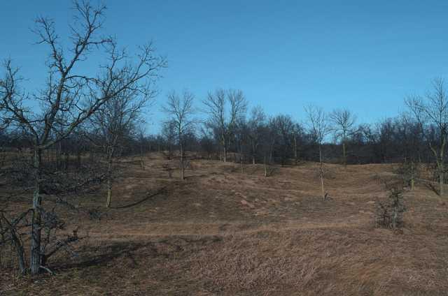 Color image of oak savanna in spring, ca. 2010.
