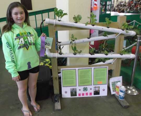 Color image of 4-H club member Alyssa Schwede at the West Polk County Fair with her hydroponic vegetable garden exhibit, 2015. The exhibit was awarded a purple ribbon.