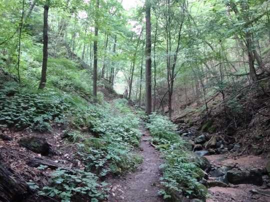 Color image of Bluff trail at Interstate State Park, 2015. Photograph by Minnesota Department of Natural Resources Staff.