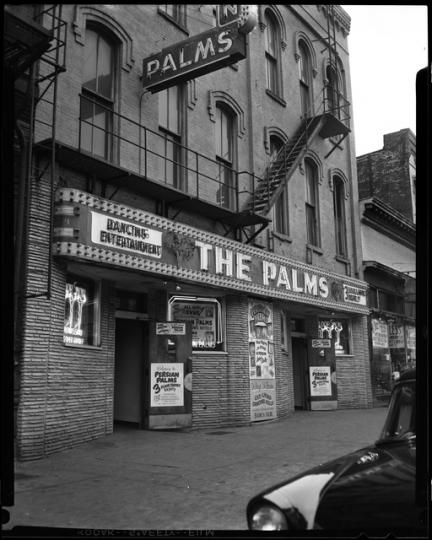 Persian Palms Tavern