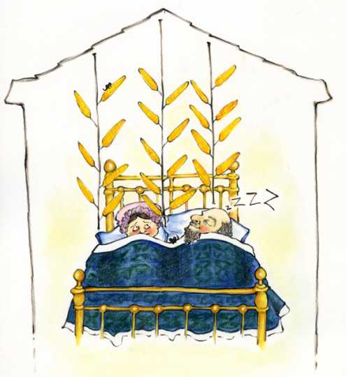 Drawing of a farmer and his wife in bed with ears of corn suspended above them for drying in a warm bedroom.