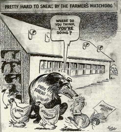 Cartoon with Farm Bureau watchdog, 1955.