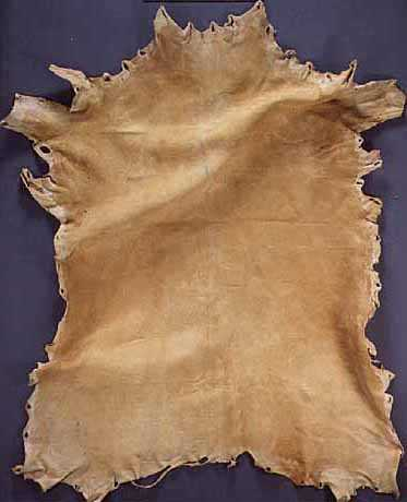 Ojibwe tanned deer hide