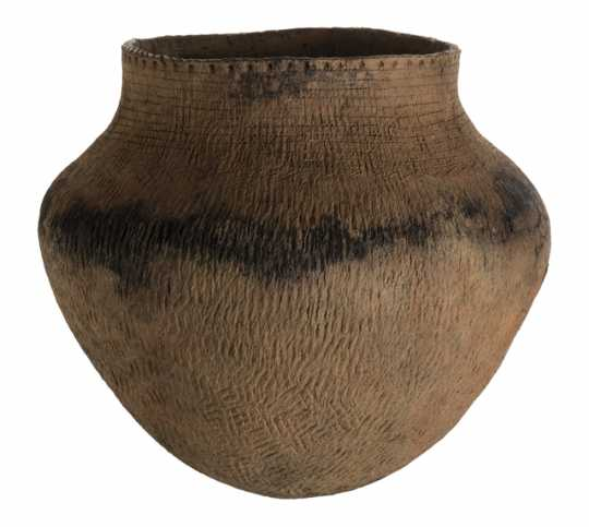 Ancient ceramic vessel with evidence of wild rice