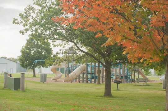 Photograph of Selvig Park in the Fall