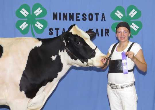 Color image of 4-H club member Hannah Rolf showing off her three-year-old Holstein dairy cow at the Minnesota State Fair, 2015.