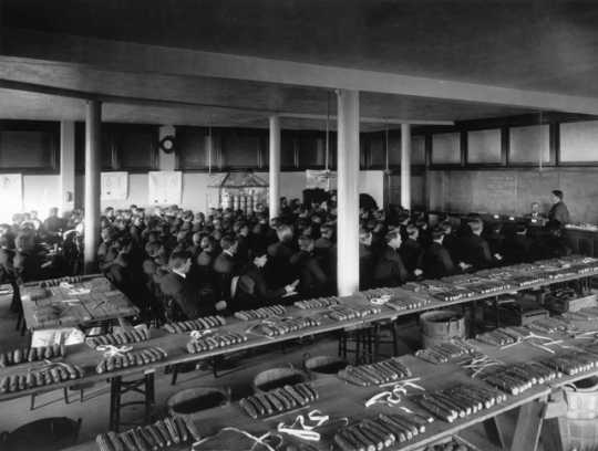 Black and white photograph of a large lecture room at University of Minnesota with ears of corn laid out for judging by students. Photographed by Harry D. Ayer c.1910.