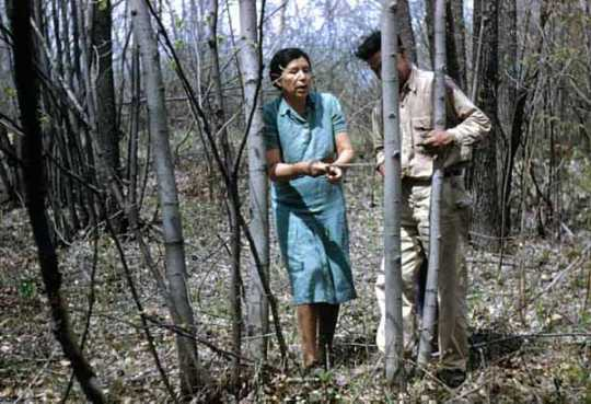 Maude and Martin Kegg harvesting basswood bark