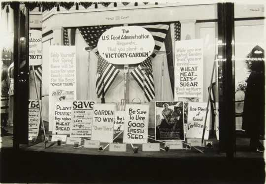 Black and white photograph of a store display window in St. Paul promoting home gardening, c.1918.