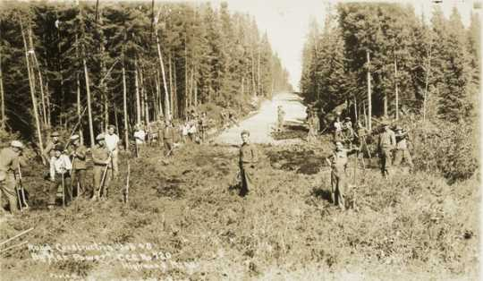 Black and white photograph of Civilian Conservation Corps workers building a road near Roosevelt, Minnesota, ca. 1933. Photographed by J. A.Gjelhaug.