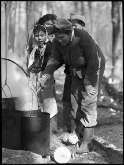 Making maple sugar on the Mille Lacs Reservation of Ojibwe