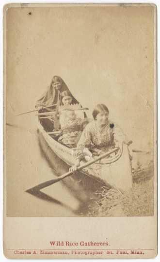 Photograph of Ojibwe women harvesting wild rice c.1885.