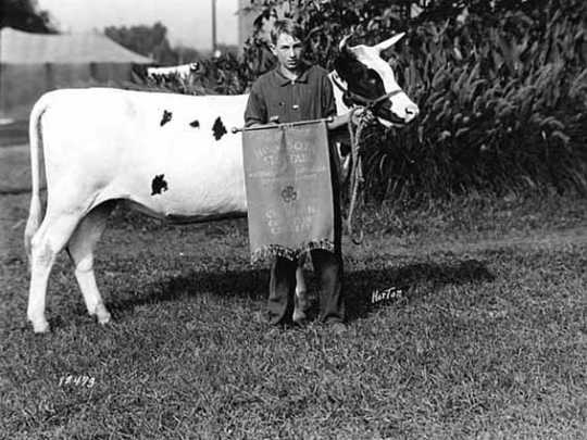 Black and white photograph of 4H Calf Club champion and his calf, 1923.