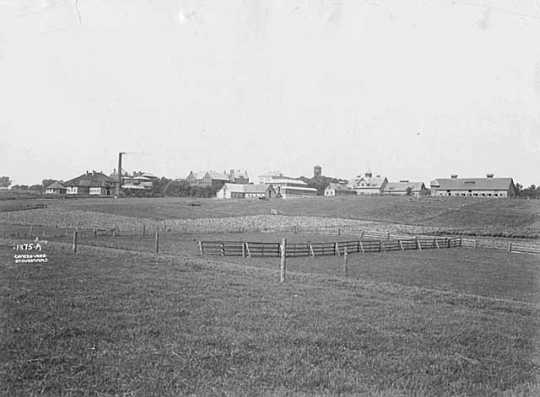 Black and white photograph of the University of Minnesota, College of Agriculture, St. Paul, ca. 1903.