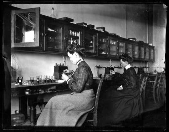 Students in biology laboratory