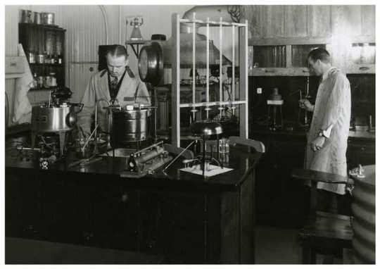 Researchers at the University of Minnesota