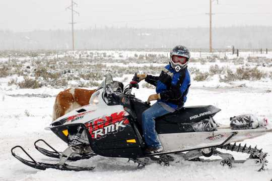 Polaris RMK series snowmobile. Introduced in 1996, the RMK series of snowmobiles Polaris's entry into the deep snow mountain sled market. Photograph taken in Island Park, Idaho, by Flickr user MotoWebMistress. CC BY 2.0.
