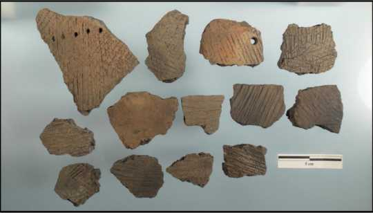 Sherds of Fox Lake-type ceramics