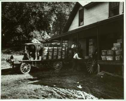 photograph of the fruit breeding farm