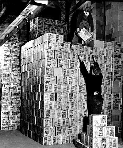 Stacking cartons of Green Giant peas and corn, Minnesota Valley Canning Company, LeSueur.