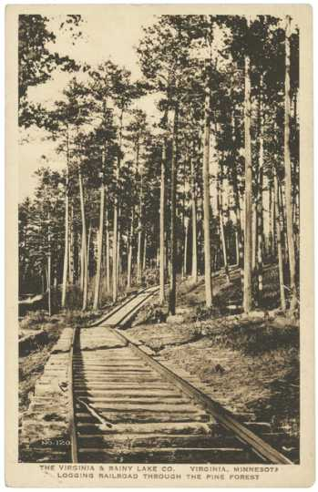 Logging tracks laid through the pine forest by the Virginia and Rainy Lake Company, ca. 1928.