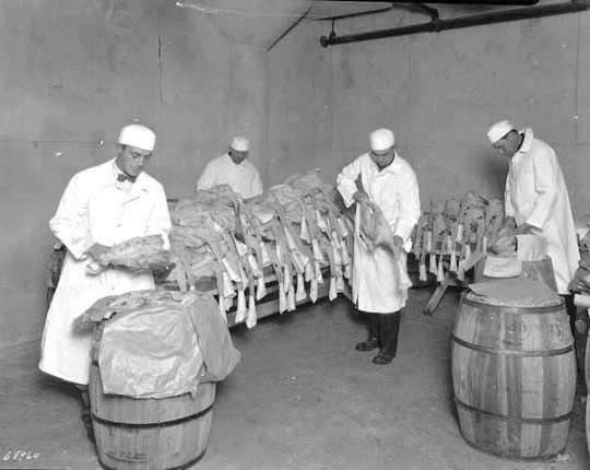 Black and white photograph of Turkeys, Land O'Lakes, Minneapolis, 1927. Photograph by Hibbard Studio.