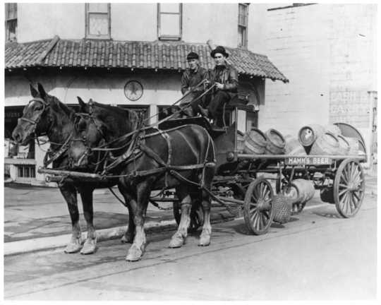 Hamm's Brewery keg delivery wagon, ca. 1923. Hamm's delivered kegs of beverages via horse-drawn carts.