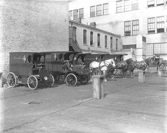 Black and white photograph of L. S. Donaldson delivery wagons, 1911. Photograph by C.J. Hibbard.