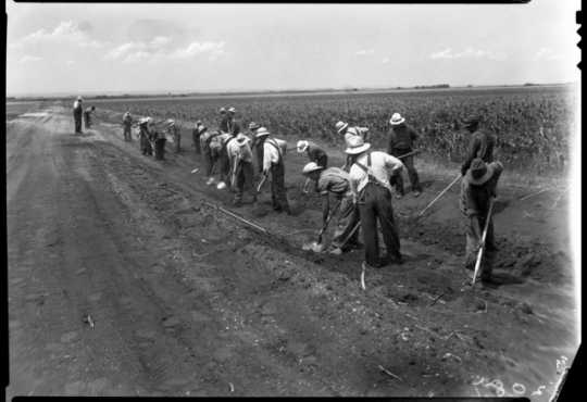 Black and white photograph of drought farmers working on a farm to market road in Foster Township, south of Beardsley in Big Stone County, 1936.